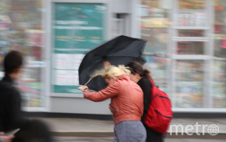 Число жертв московского урагана увеличилось. Фото Василий Кузьмичёнок