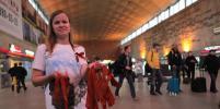 Накануне Дня Победы в Петербурге раздают Георгиевские ленточки