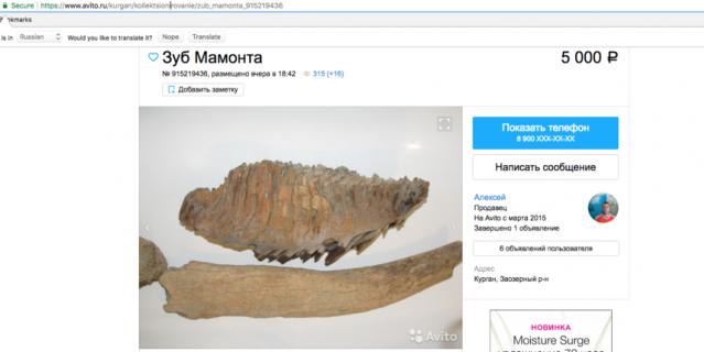 Оъявление о продаже костей мамонта на Avito.