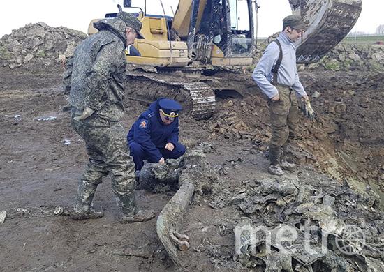 Фото пресс-службы ЗВО.