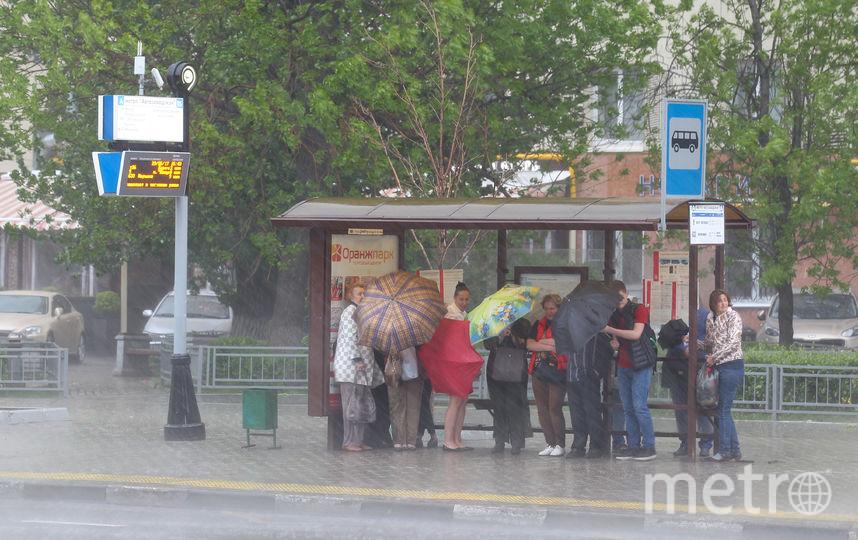 В Москве ожидаются град и гроза. Фото Василий Кузьмичёнок
