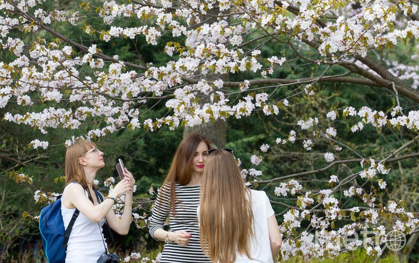 Москвичи рады приходу весны. Фото Василий Кузьмичёнок