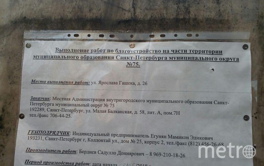 Воплощение проекта Леры в жизнь уже началось. Фото Красивый Петербург, vk.com