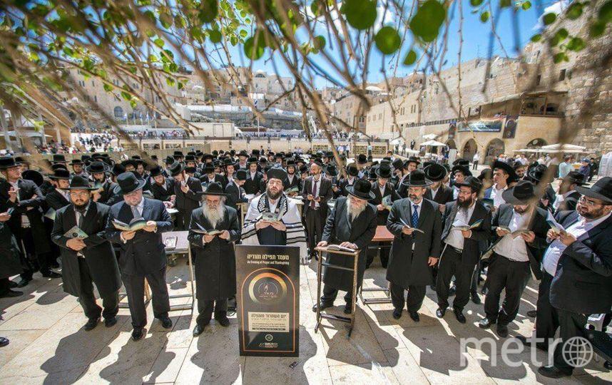 День Спасения и Освобождения впервые официально отмечают в Израиле. Фото Предоставлено пресс-службой РЕК