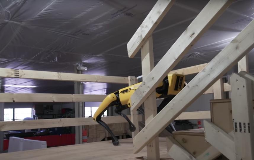 Робот SpotMini. Фото Скриншот Youtube