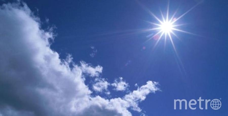 В Петербурге погода будет летней.