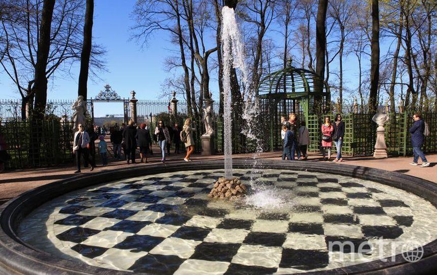 Царицын фонтан в Летнем саду. Фото татьяна тимирханова, Интерпресс
