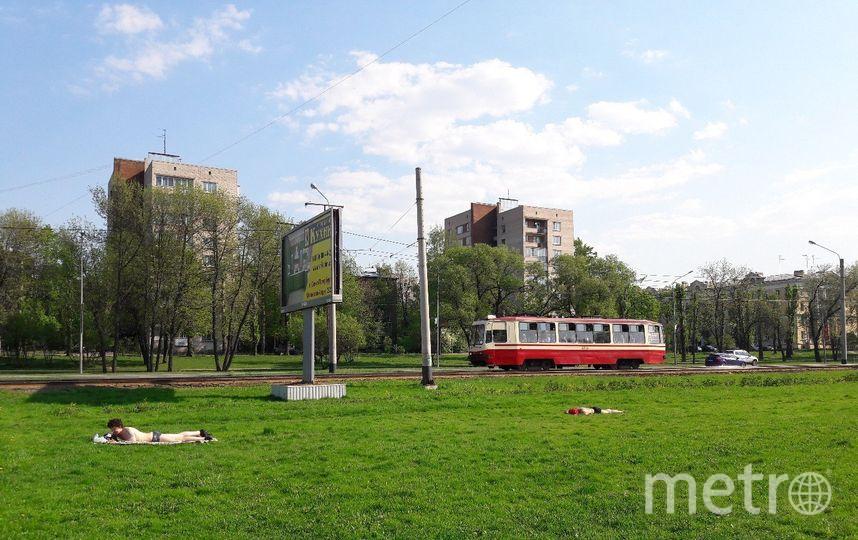 """В жару петербуржцы готовы загорать где угодно. Фото все - Софья Сажнева., """"Metro"""""""