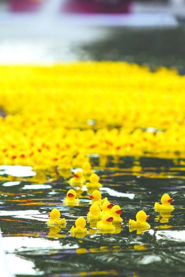 "Резиновые ""атлеты"" на воде. Фото ""Metro"""