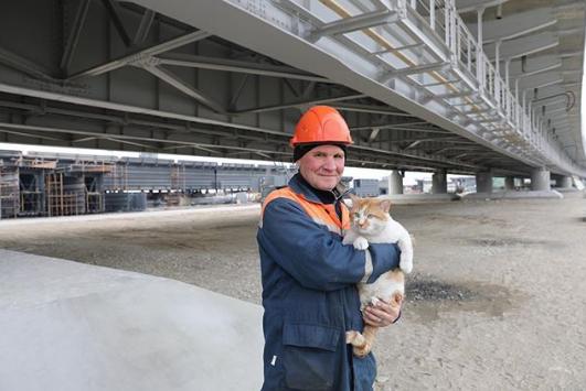 Кот Мостик с одним из строителей Крымского моста. Фото www.instagram.com/cat_the_most
