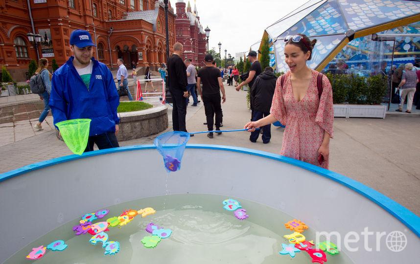 """Фестиваль """"Рыбная неделя"""". Фото Василий Кузьмичёнок, """"Metro"""""""