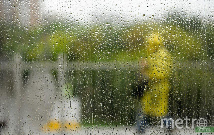 В пятницу москвичей ожидают сильные ливни с грозой и град. Фото Василий Кузьмичёнок