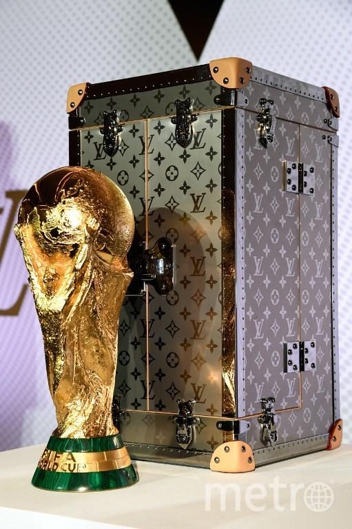 Кубок чемпионата мира по футболу. Фото AFP