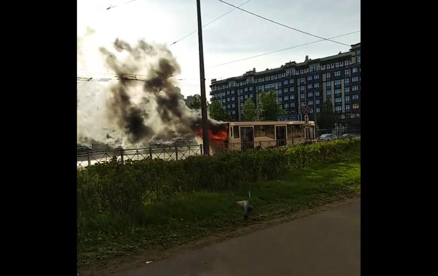 В Петербурге на проезжей части загорелся автобус. Фото скриншот видео https://vk.com/spb_today