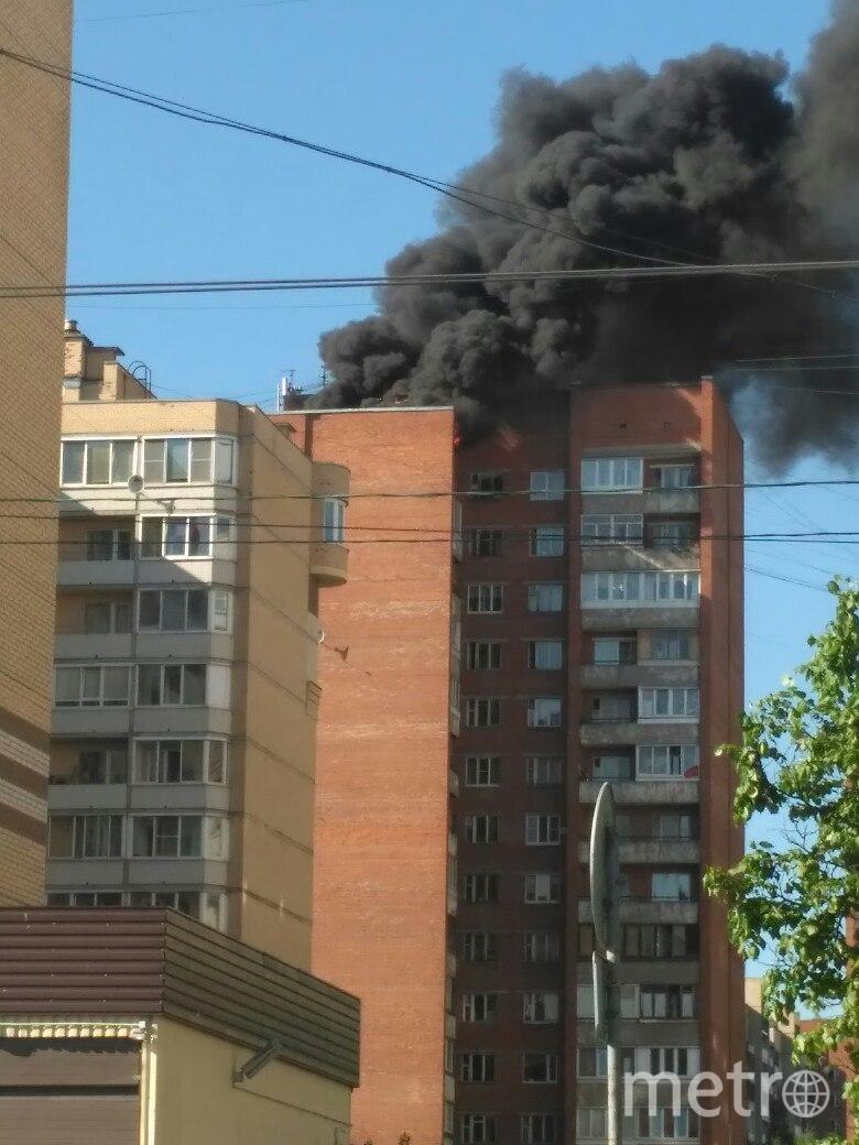 ДТП и ЧП | Санкт-Петербург | vk.com/spb_today. Фото Евгений Радченко, vk.com