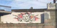 Пензенец может сесть в тюрьму из-за граффити с котиком-неформалом в Петербурге