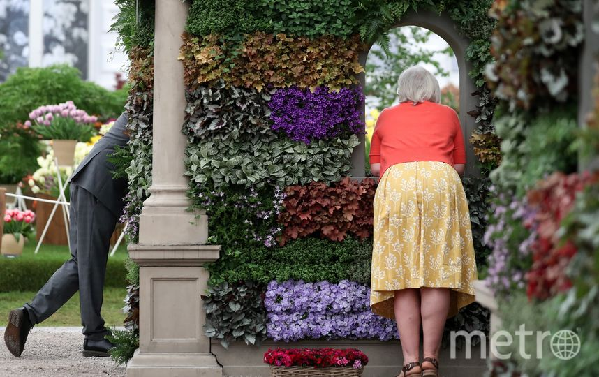 Chelsea Flower Show 2018. Фото AFP