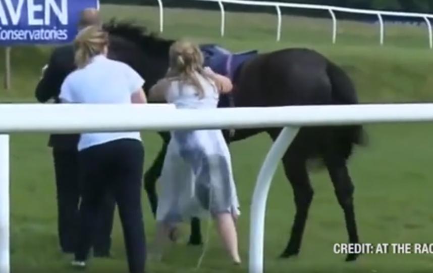 Журналистка на скаку остановила коня во время прямого эфира. Фото скриншот видео соцсети