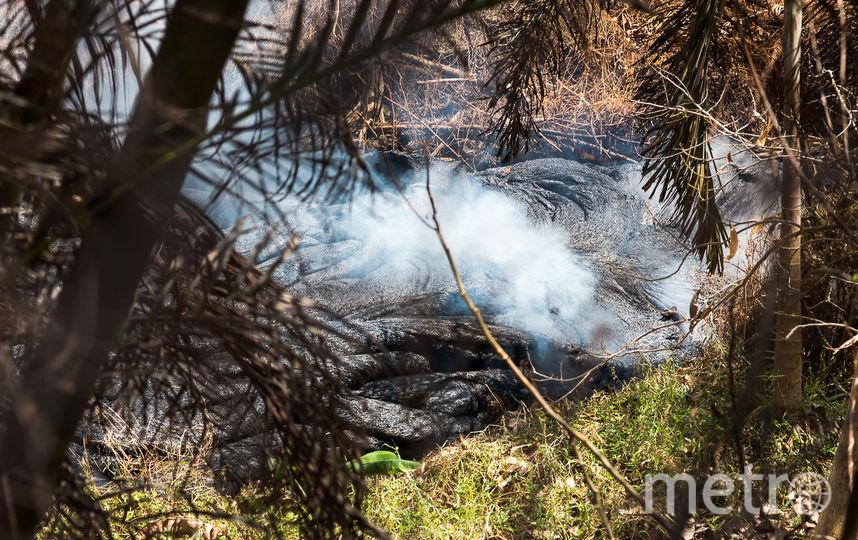 Килауэа – самый активный вулкан в мире и один из пяти на Большом острове Гавайев. С начала мая около 2 тысяч человек были вынуждены эвакуироваться, а лава уничтожила более 40 домов. Фото AFP