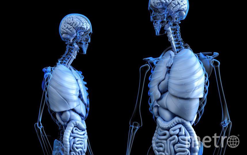 Процедура будет эффективна при атонии и парезе кишечника. Фото Pixabay