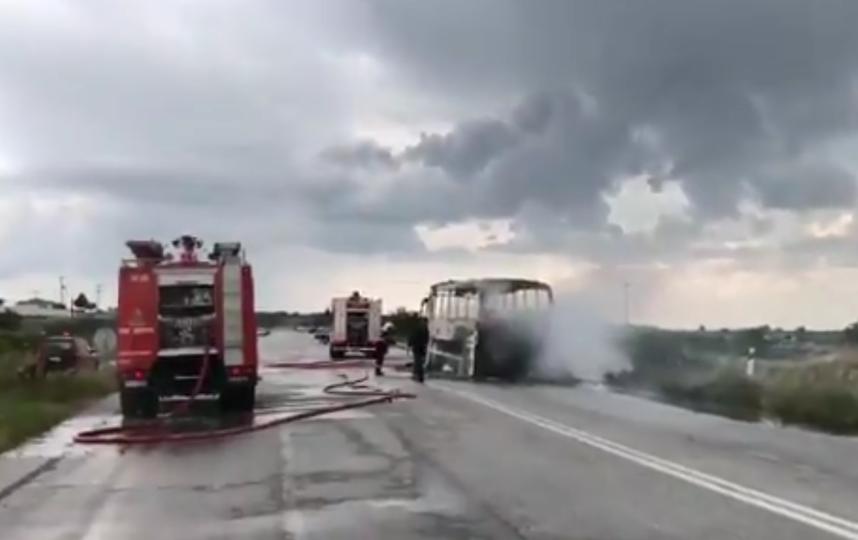 В Греции дотла выгорел пассажирский автобус. Фото скриншот видео twitter.com/eevrosgr