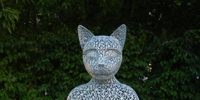 Кот Тихвами.