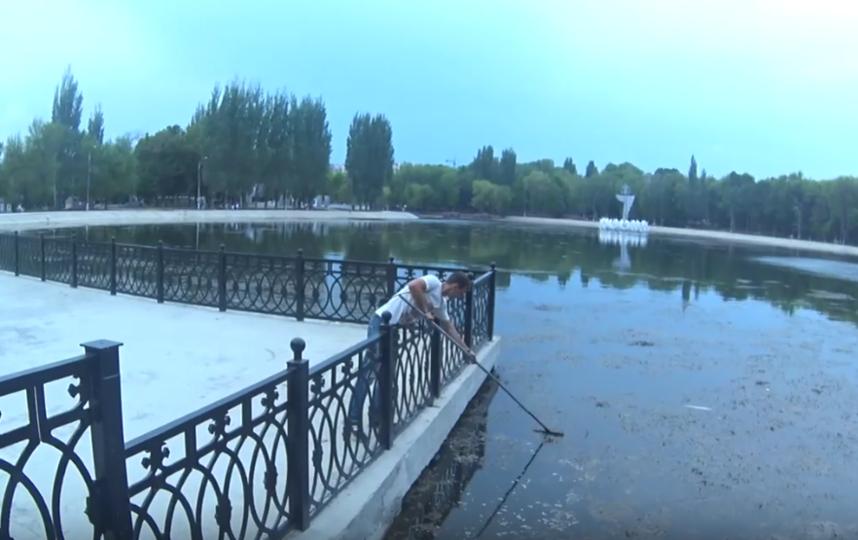 Оператор во время съемок спас тонущего в самарском озере мальчика. Фото Все - скриншот YouTube