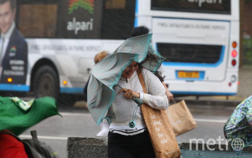В Москве 30 мая ожидается ветер до 22 м/с. Фото Василий Кузьмичёнок