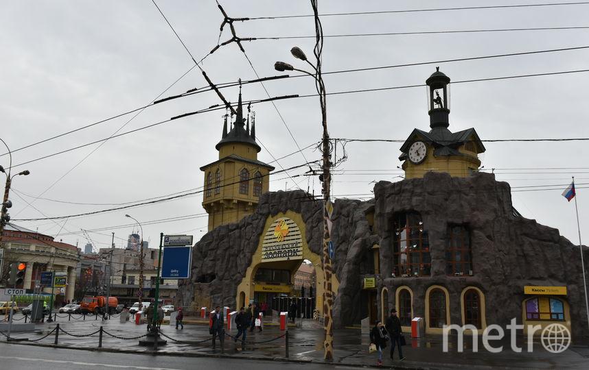 Посетителей Московского зоопарка эвакуируют из-за сильного ветра. Фото Василий Кузьмичёнок