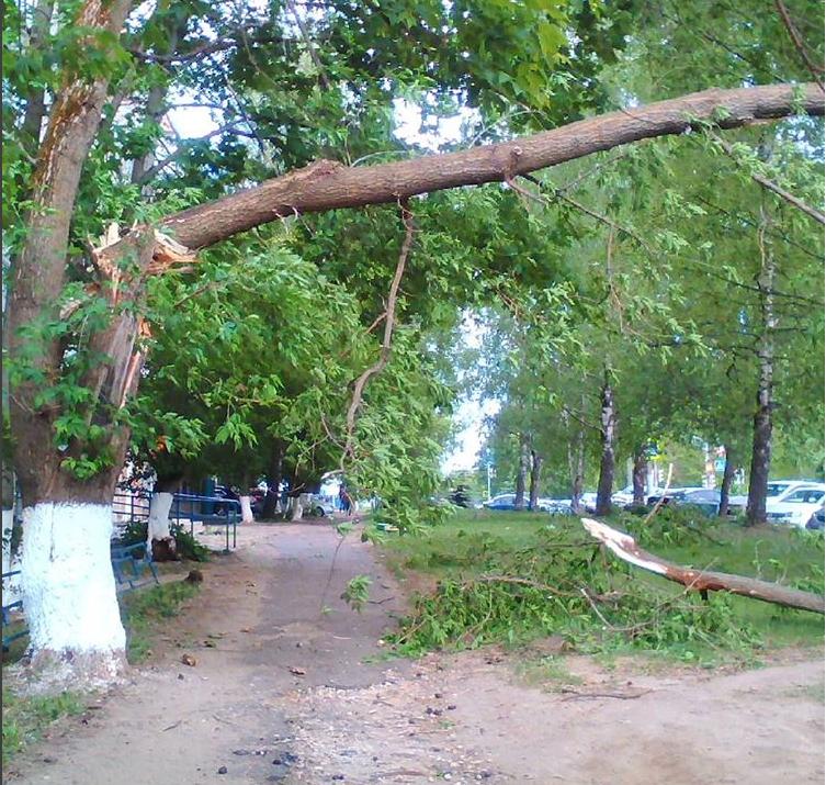 Ураган в Нижнем Новгороде 30 мая. Фото instagram.com/aleksa_cherny