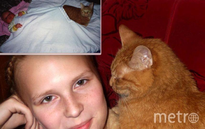 Нашего кота зовут Кузьма (2 годика), он очень любил спать с маленькой Валерией. Когда Кузьма повзрослел (17 лет), привязанность так и осталась к Валерии!. Фото Ирина