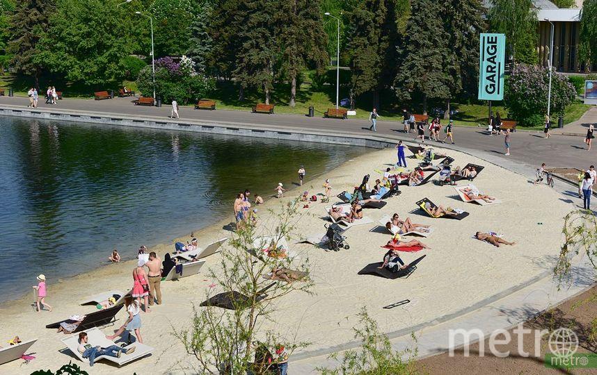 Московские пляжи будут патрулировать дроны и собаки-спасатели. Фото Василий Кузьмичёнок