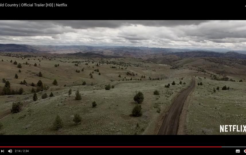 """Кадр из документального фильма """"Дикая-дикая страна"""". Фото Скриншот Youtube"""