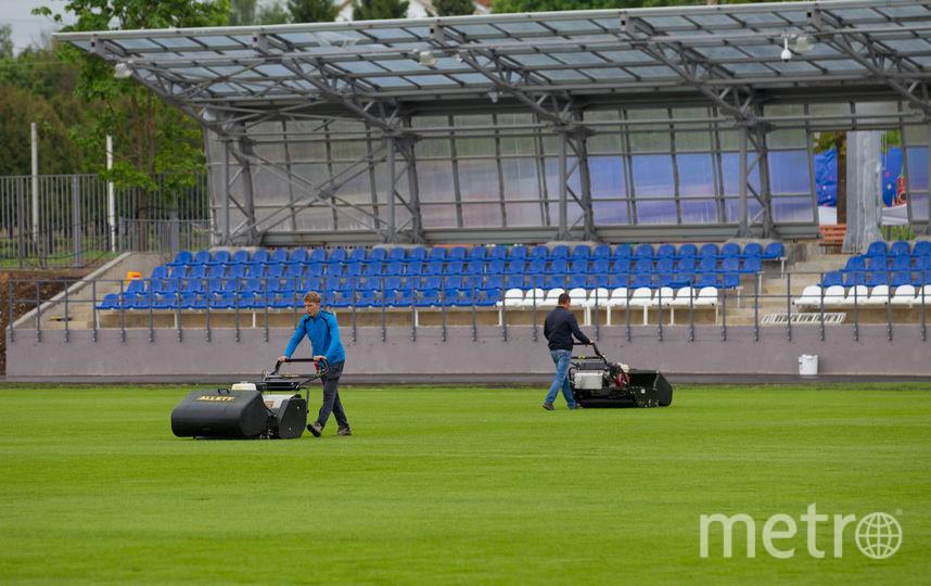 """По требованию FIFA сейчас на газон никому нельзя заходить – кроме тех, кто за ним ухаживает. Фото Василий Кузьмичёнок, """"Metro"""""""