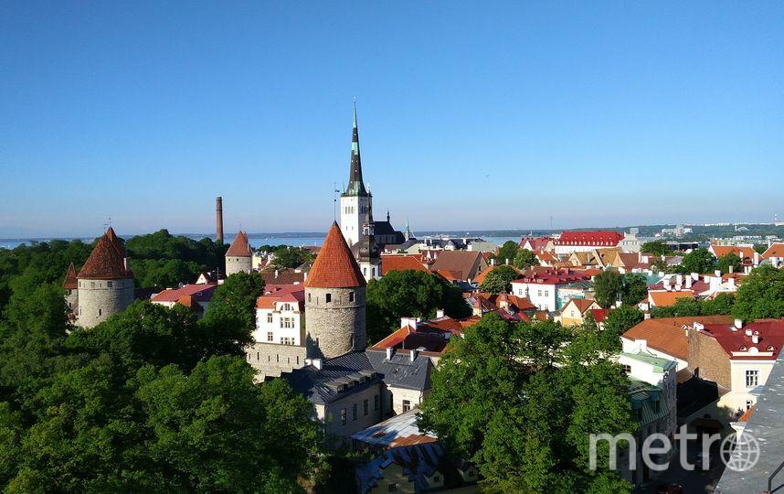 Экс-президенту Эстонии ответили на угрозы о том, что Россия может потерять Петербург. Фото Pixabay