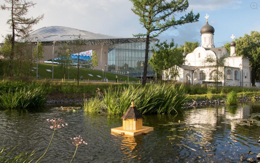 Для них уже сделали плавучий домик. Фото mos.ru