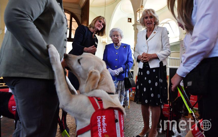 В гостях у благотворительной организации. Фото Getty