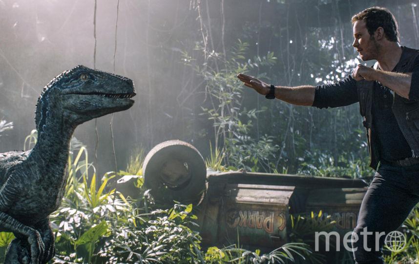 Скриншот из фильма. Фото UPI