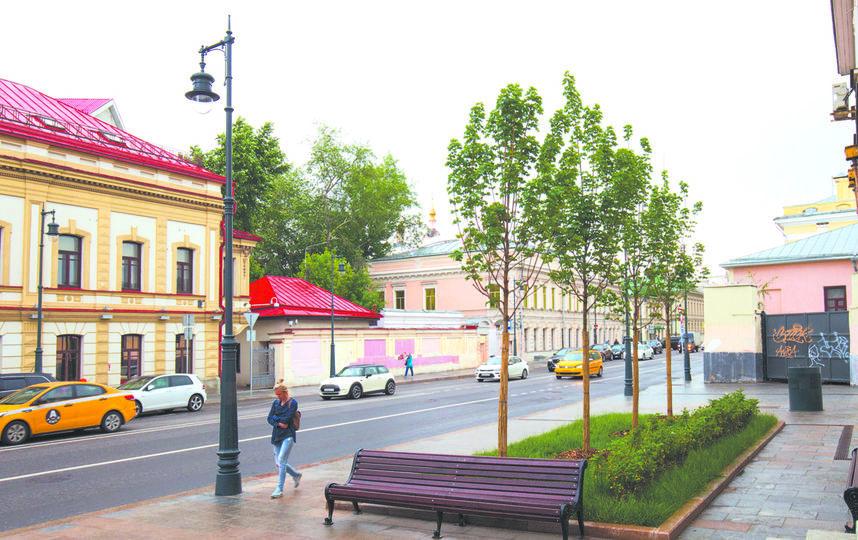 Скамейки. Фото Василий Кузьмичёнок