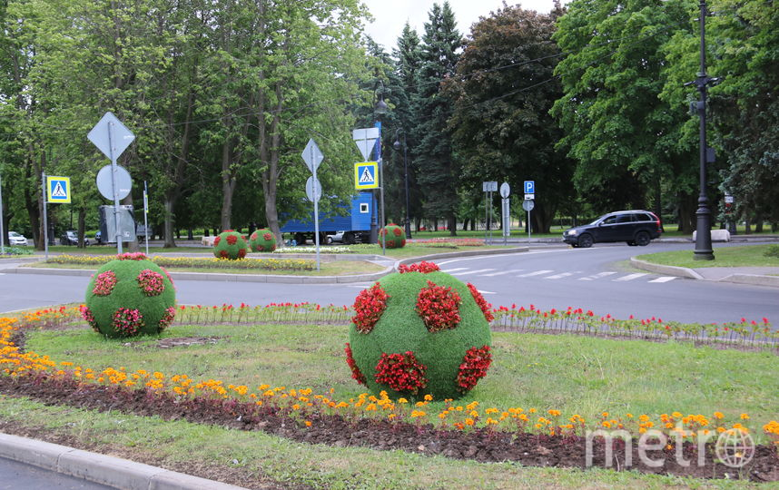 Санкт-Петербург украсили восемью миллионами цветов к ЧМ-2018. Фото www.gov.spb.ru/gov/