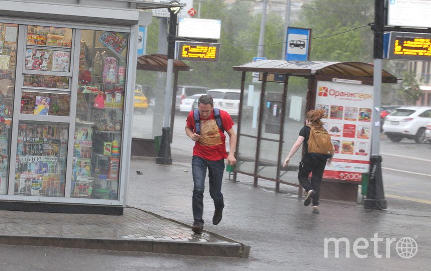В пятницу москвичей ожидают гроза и ветер с порывами 14-19 м/с. Фото Василий Кузьмичёнок
