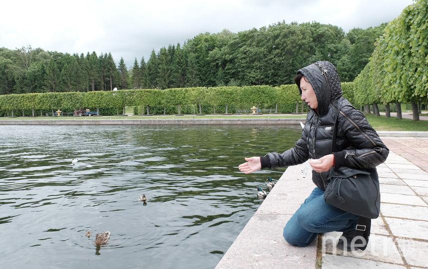 """За день до того, как был сделан этот снимок, в пруду плавали шестеро утят. За ночь пятеро утонули. Фото Алена Бобрович, """"Metro"""""""