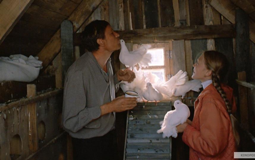 """Кадры из фильма """"Любовь и голуби"""". Фото Мосфильм."""