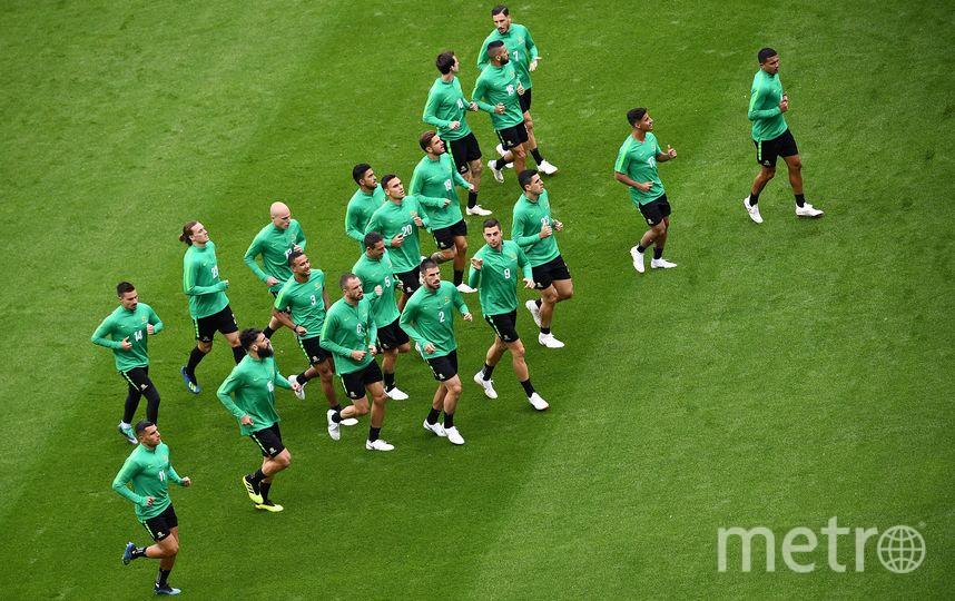 Тренировка сборной Австралии перед матчем с Францией. Фото AFP