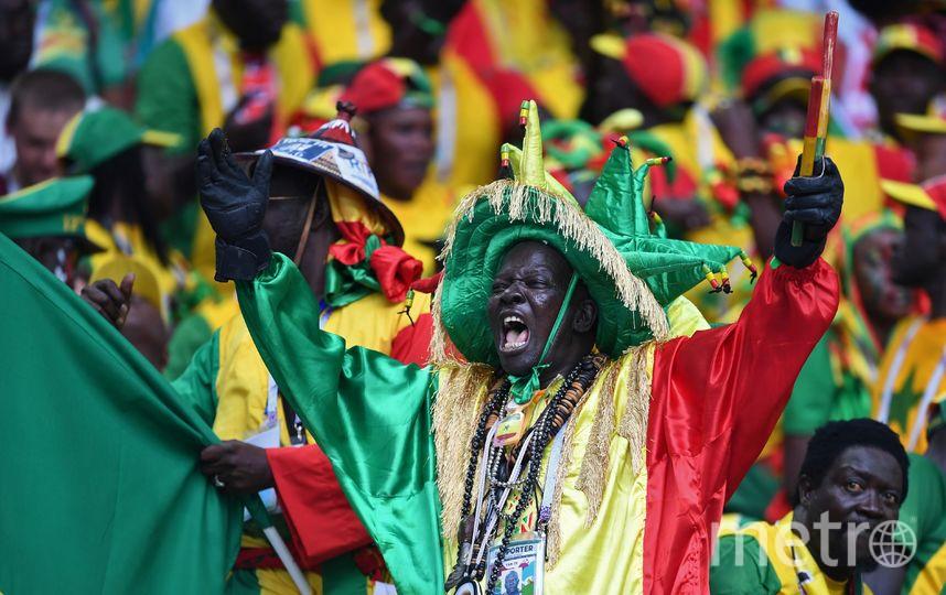 Сенегальцы празднуют гол своей сборной. Фото AFP
