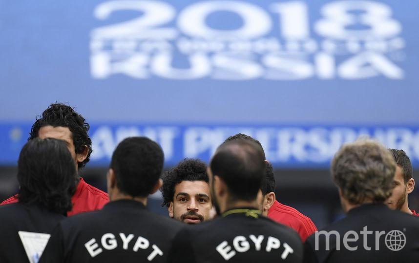 Сборная Египта. Фото AFP