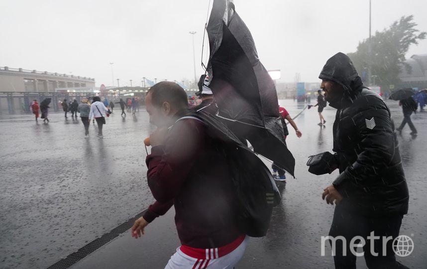 Египетские болельщики перед матчем. Фото Слава Акимов