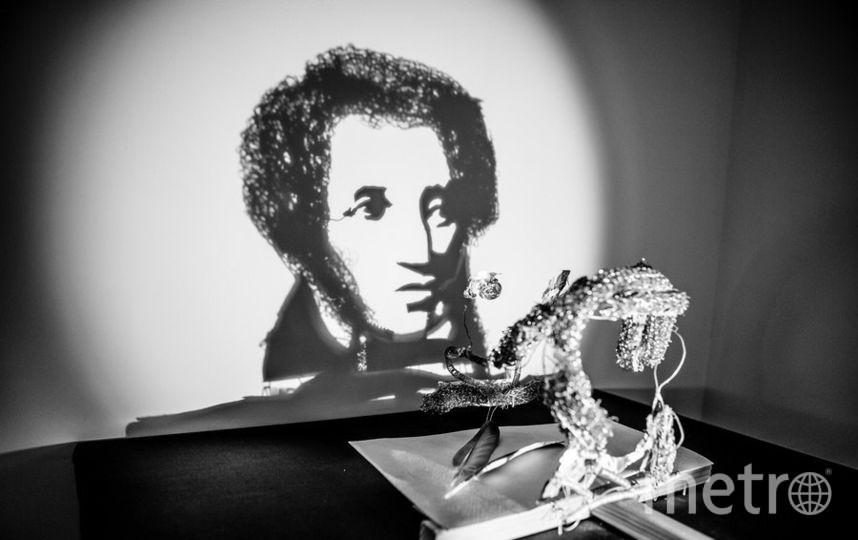 Арт-объекты созданы из теней. Фото  shadowmuseum.ru