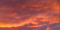 Апокалиптический закат в Петербурге впечатлил горожан: фото