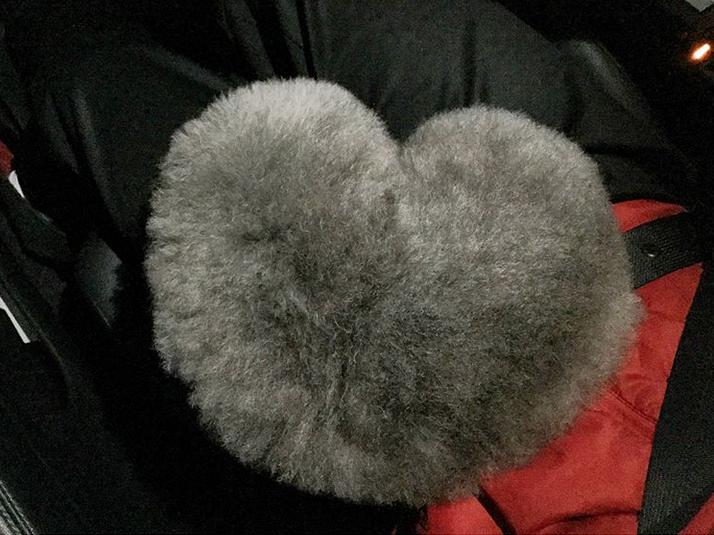 Сезам выглядит, как настоящий шар из пуха. Фото Скриншот Instagram: @yorikokoro